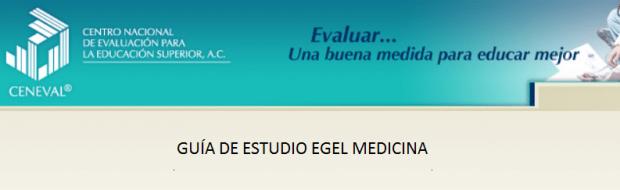Descarga gratis la guia del EGEL Medi (Medicina)